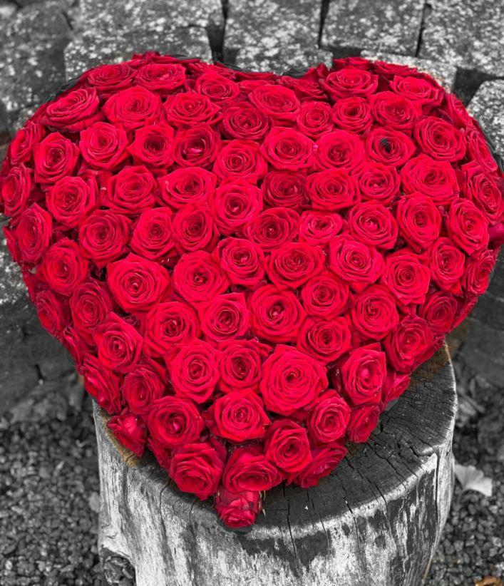 Hjerte 18
