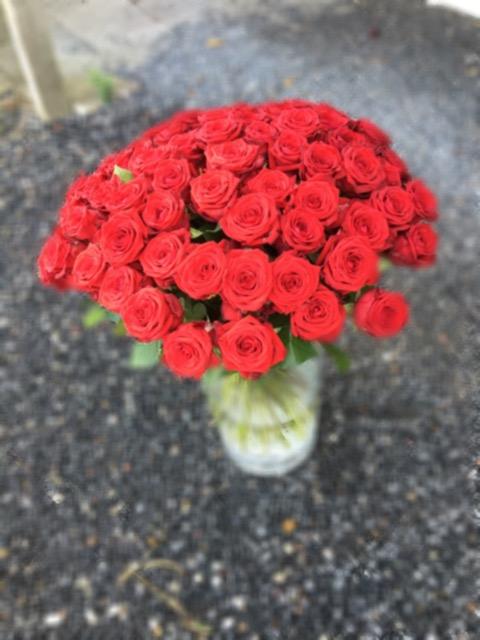 05 Røde roser